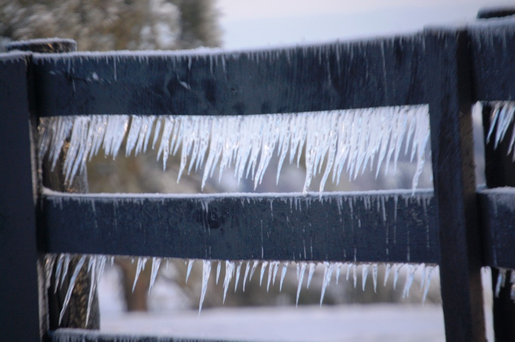Icicles decorate a plank fence in horse country