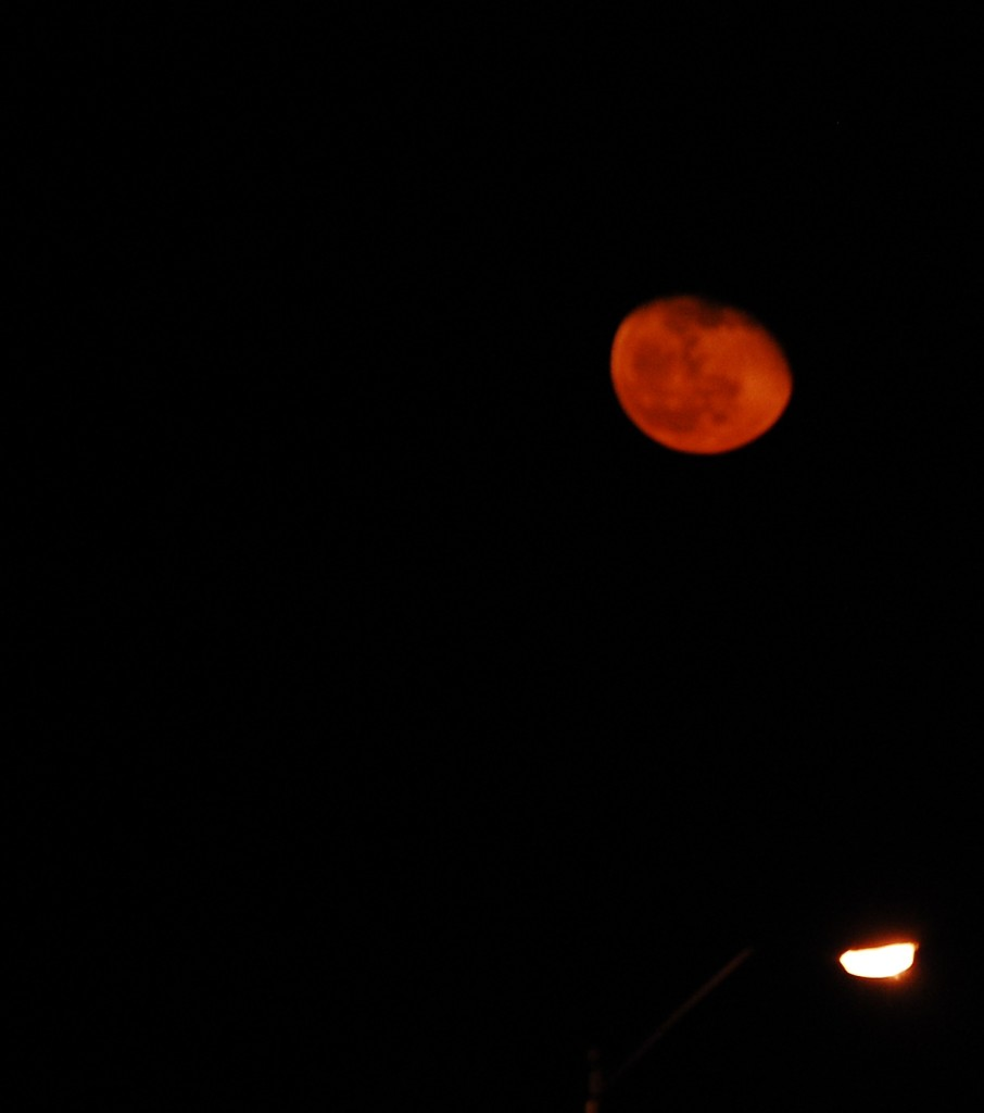 I got this moon shot on March 19 late in the evening.  This was its color.  It was awe inspiring.  Taken in Lexington, KY