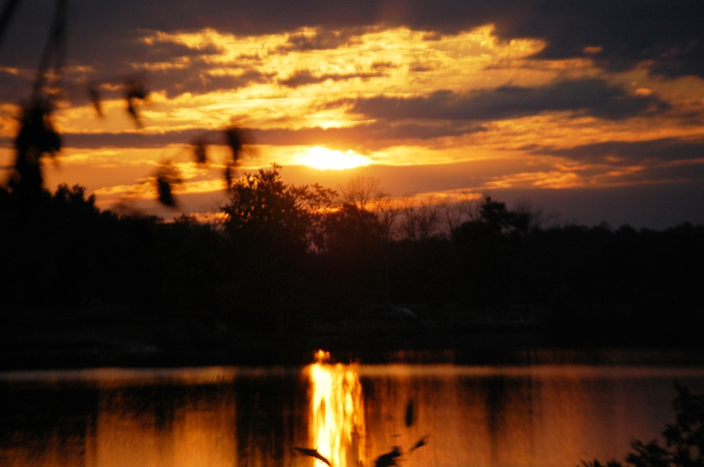 Sunrise glow over Jacobson Lake in Lexingotn