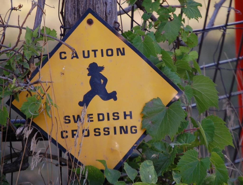 Just for fun....Caution