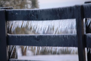 Icicle Fence - Jacobson Park, Lexington, KY