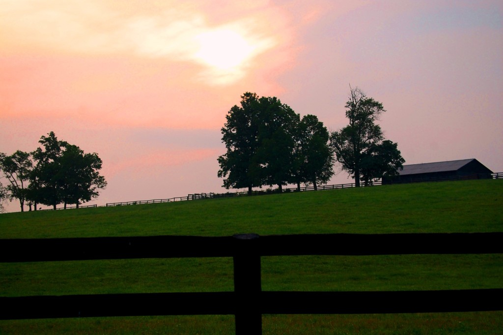 Sun's glow over horse farm country