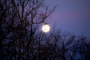 The full moon glowed opposite the sunrise