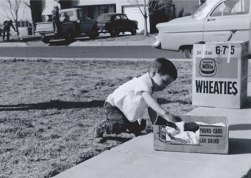 March 1959 apparently. Playing with a cat in Albuquerque. Love seeing the old cars in the background....provides some perspective